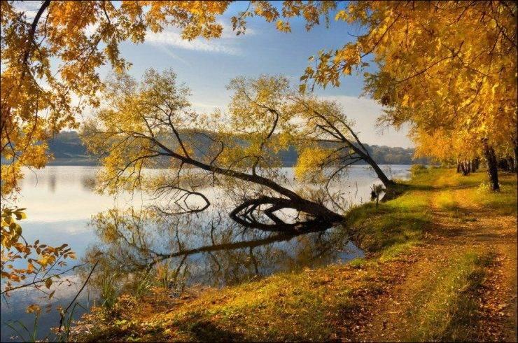 Barwy jesieni 38