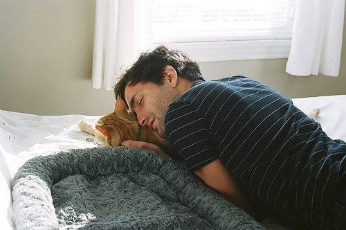 Mężczyźni i koty 7