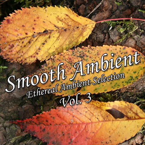 VA - Smooth Ambient Vol.3 (2011)