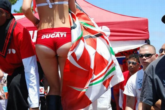 Dziewczyny Ducati 45