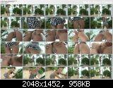 Lexa - In The Crack № 647  (2012/HD/1080p) [InTheCrack] 1.83 GB