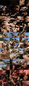 Private Best of Year 9: Best Of 2009 (2009/DVD9) [Private] 7.33 GB