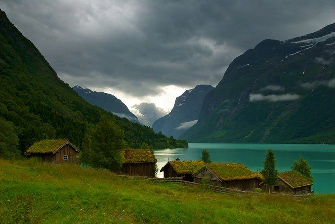 Zielone dachy w Norwegii #2 22