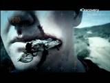 Скачать с letitbit  Инородные тела / Body invaders (2012) SATRip