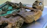 Скачать с letitbit  Этци - загадка археологии / Otzi - an Archaeological Detective Story (2011) SATRip