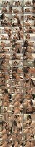 Top Wet Girls 12 (2012/DVD5) [Evil Angel] 4.37 GB