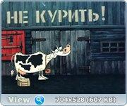 http://s14.directupload.net/images/120926/2kanczvl.jpg