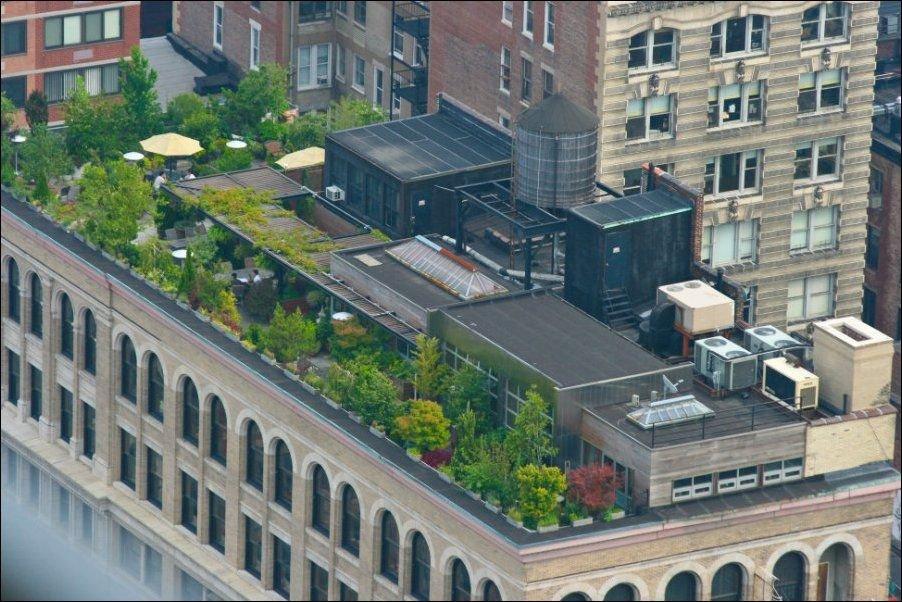Zielone dachy 10