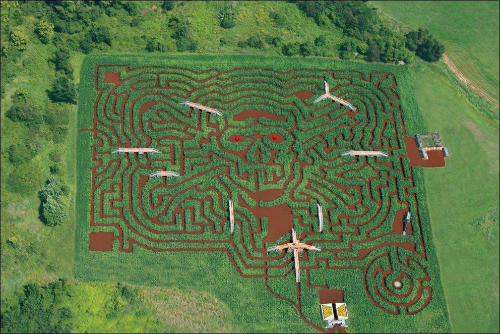 Labirynty na polach kukurydzy 4