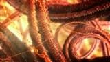 Скачать с letitbit  Внутренняя Вселенная: Тайная жизнь клетки / Secret Universe: The Hidden Life of the Cell (2012) HDTVRip