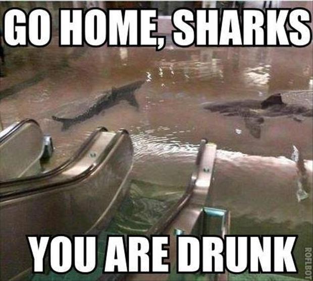 Wracaj do domu, jesteś pijany 3