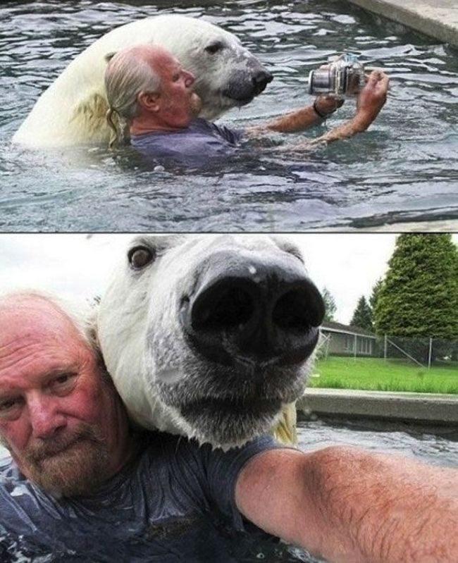 Najdziwniejsze zdjęcia ze zwierzętami 9