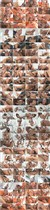 University Gang Bang 7 - Devil's Films - (2010/WEB-DL/3.72 Gb)