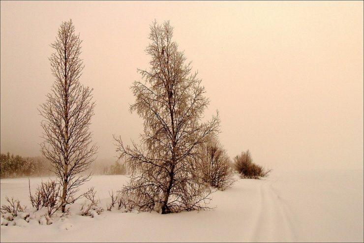 Zimowe krajobrazy 2