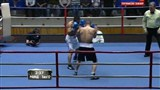 Бокс: Денис Шафиков - Алишер Рахимов / Boxing: Denis Shafikov vs Alisher Rahimov (2013) SATRip