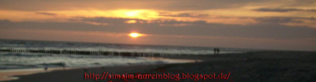 Nur ein Blog-Banner