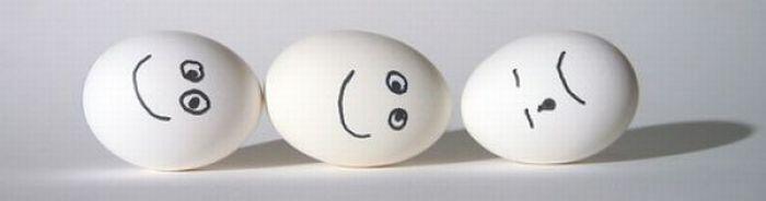 Sekretne życie jajek 16