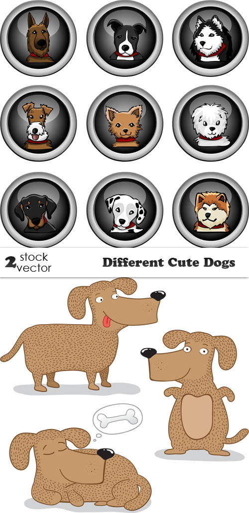 Vectors - Different Cute Dogs